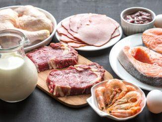 Продукты богатые на белок
